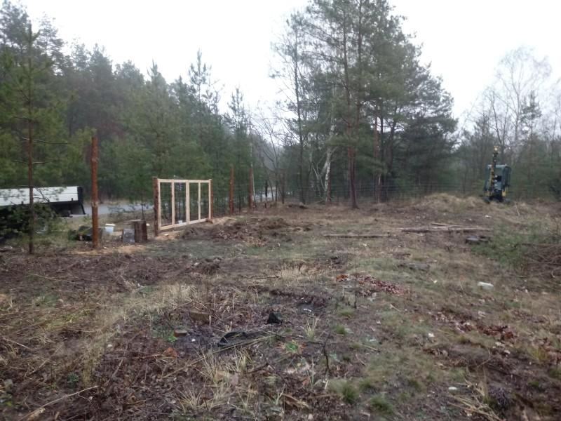 ile kosztuje ogrodzenie działki siatką leśną